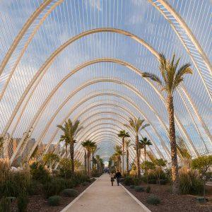 Alicante-Valencia 7 dagen per vliegtuig